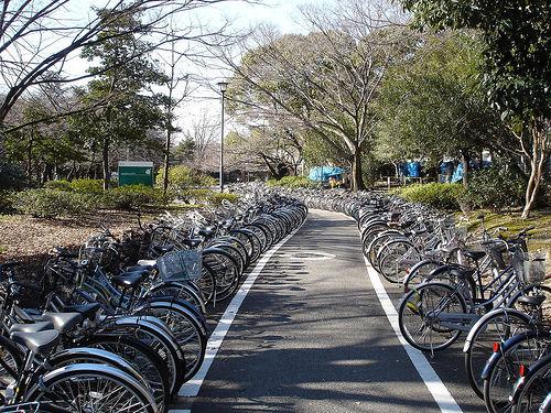 parking-rowerowy